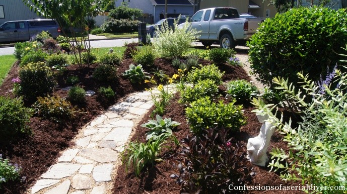 Front yard transformation confessions of a serial do it for Pretty low maintenance plants
