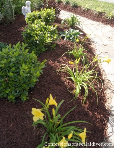 How to create a landscape from scratch confessions of a for Designing your garden from scratch