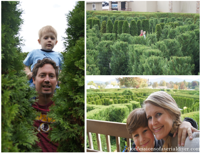 Garden Maze at Luray Caverns