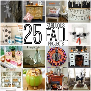 25 Fabulous Fall Projects {Get Your DIY On Features}