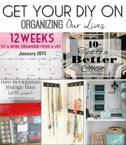 Get Your DIY On January 2015: Operation Organization