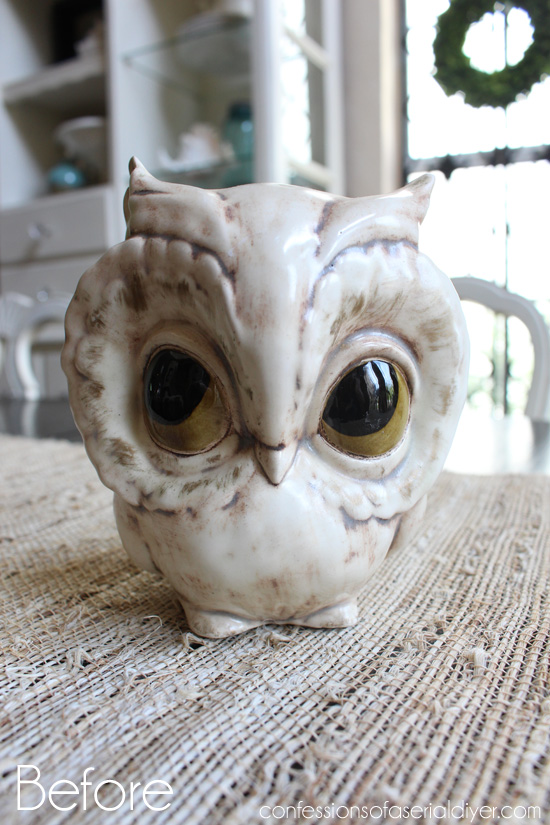 Owl-Before