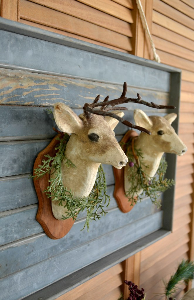 Buck & Doe heads with green branches around them on the wooden wall.