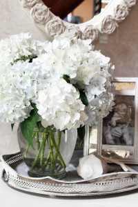 Gorgeous hydrangeas are the perfect cut flowers