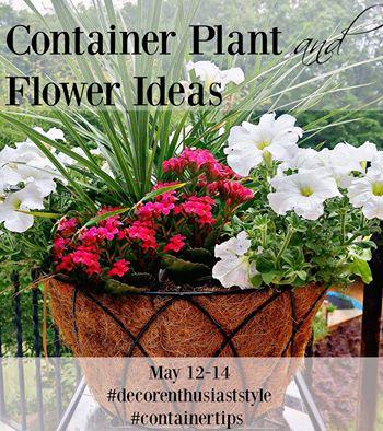 Container-Planter-Ideas (2)