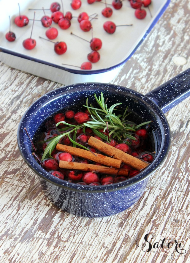 Scents of Fall Simmer Pot Recipefrom Satori Design for Living