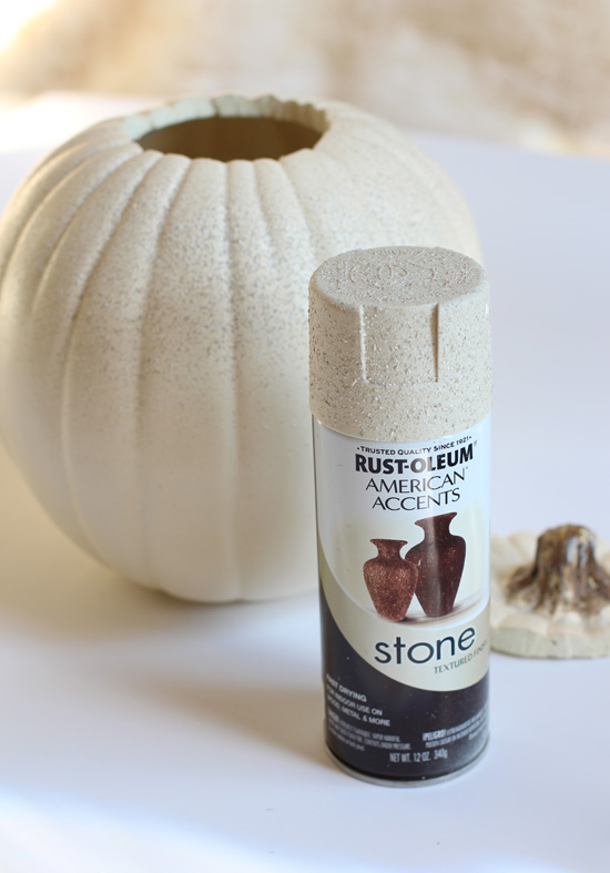 Rustoleum Stone Textured Finish spray adds some character to a boring pumpkin.