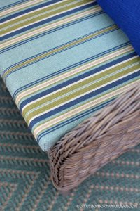 Seat cushions from Pier One.