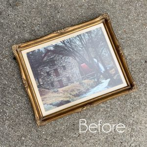 Thrift Store Frame Repurposed (& a video on how to stencil and make it look hand-painted!)