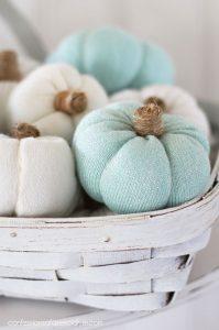 Sweater pumpkins