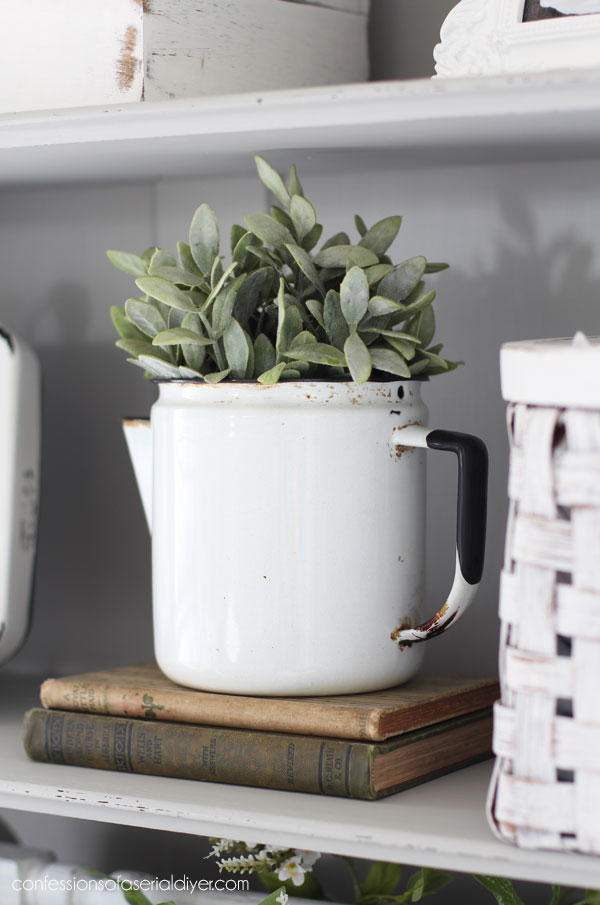 Enamel kettle as a plant holder